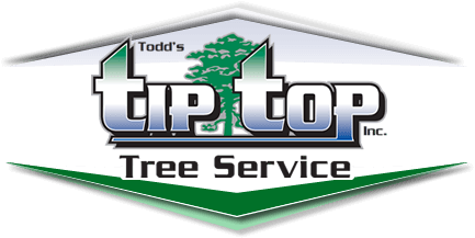 Todd's Tip Top Tree Service, Inc.